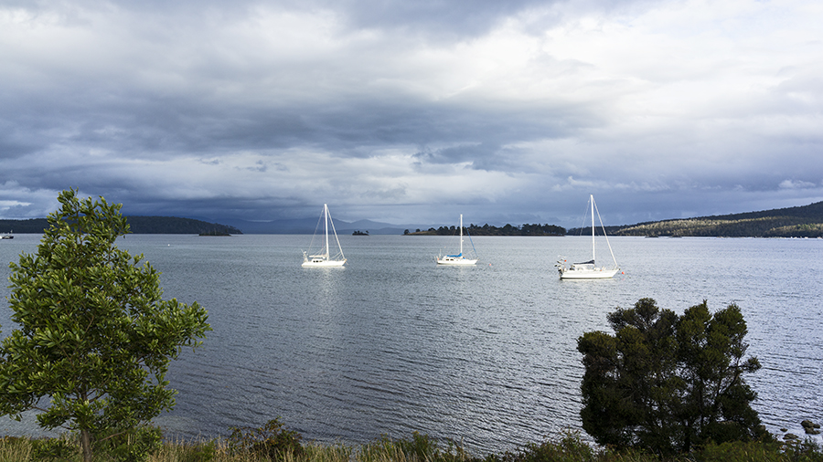 Along the Huon River